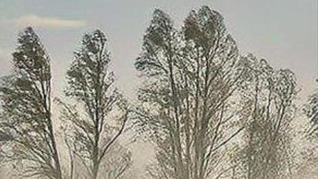 又要来?蒙古国国家紧急情况总局发布沙尘暴天气预警