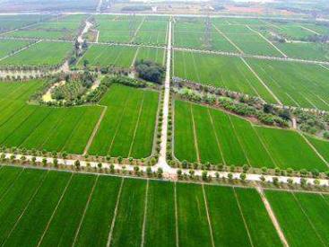 河北农业农村基建领域积极推广以工代赈