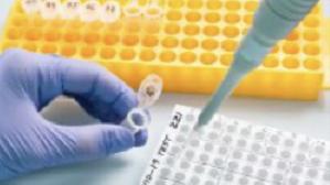 安徽合肥:确诊2名患者均为省外来肥人员