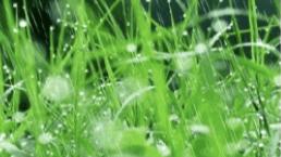 南方强降雨带将逐渐南落 京津冀将现大范围高温