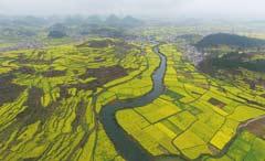 中华人民共和国土地管理法实施条例
