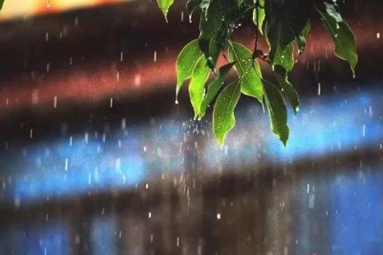 比常年同期多42%!截至8月1日8时今年以来河北省平均降水量443毫米
