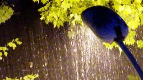 中国气候变化蓝皮书:极端强降水事件呈增多趋势