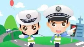 """河北城市道路交通事故1至8月""""大数据""""出炉:""""未按规定让行""""成最大""""杀手"""""""